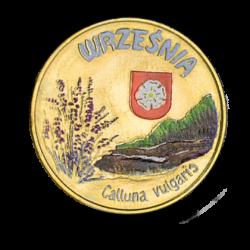 Września 2010 - 6 Wrzosów kolor