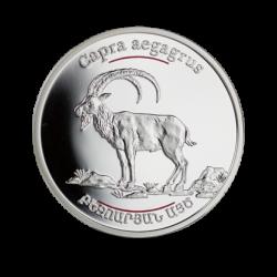 Armenia 2008 - 100 Dram koza bezoarowa